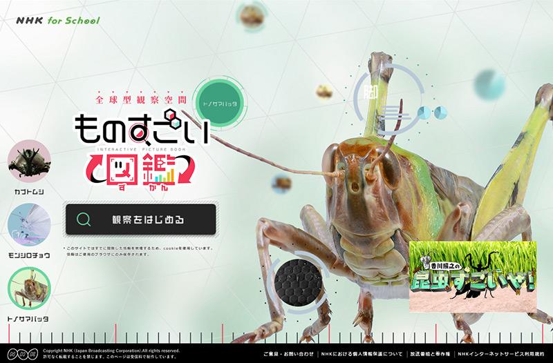 ものすごい図鑑|NHK for School