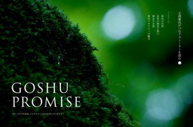 GOSHU PROMISE – 五洲薬品株式会社