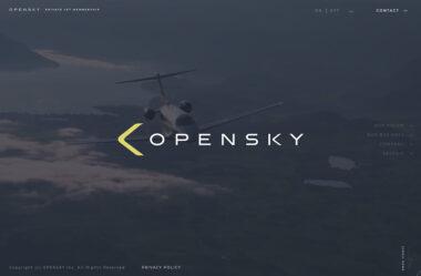 株式会社OpenSky